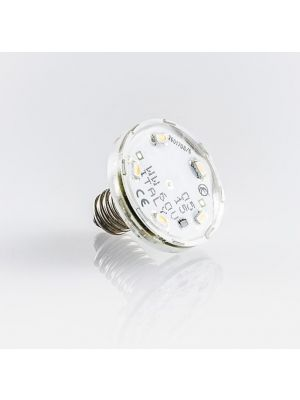 Amusement LED lights - E10 lamp 8 LED 24V  1W (6W) - waterproof